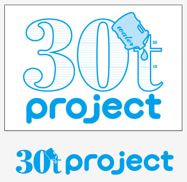 30t project